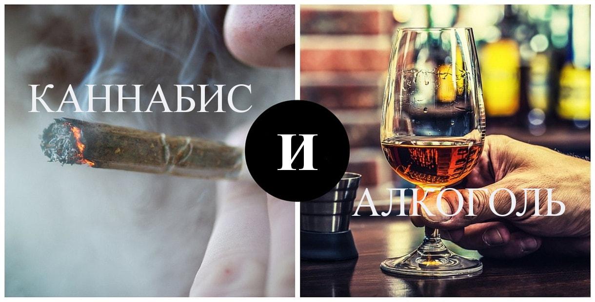 К чему приводит употребление марихуаны и спиртного?>