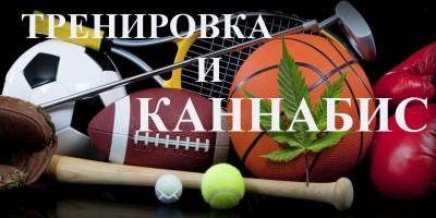 Спортивные тренировки и влияние на них марихуаны