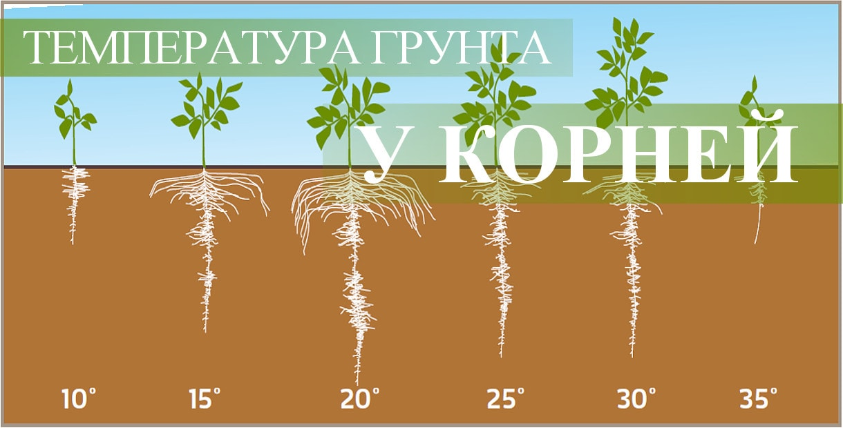Температура - важный показатель почвы для конопли>