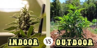 Индор vs Аутдор: в чем разница?