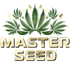 Семена конопли Master-Seed