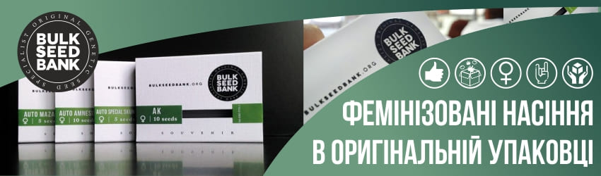 Фемінізовані насіння марихуани Bulk Seed Bank в оригінальній упаковці