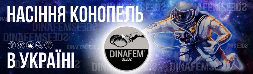 Фемінізовані насіння конопель, марихуани від Dinafem в Україні