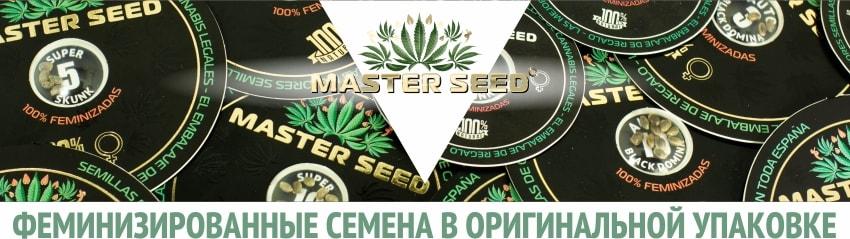 Феминизированные семена марихуаны в оригинальной упаковке
